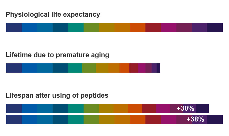 A graph of physiological lifespan, lifespan due to premature aging, and lifespan after using peptides